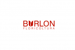 Floricoltura Burlon Logo - Santa Giustina Belluno